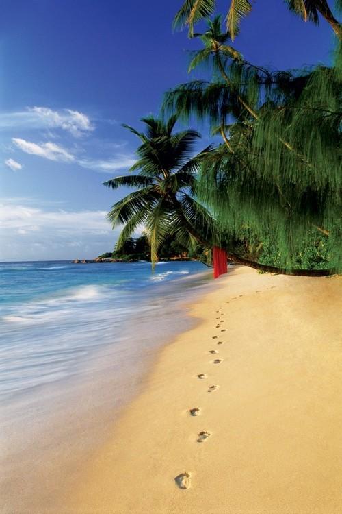 Plagát Beach footsteps