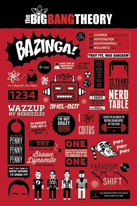 Plagát BIG BANG THEORY - infographic