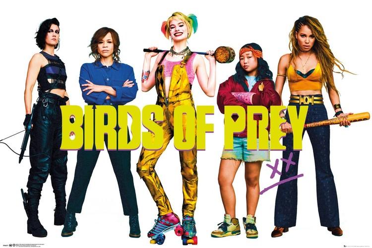 Plagát  Birds of Prey: Podivuhodná premena Harley Quinn - Group