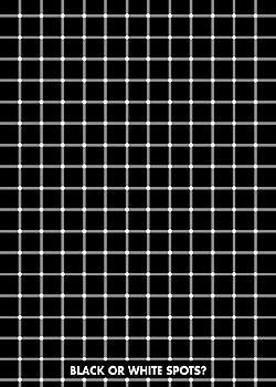 Plagát Black or white spots?