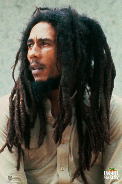 Plagát Bob Marley – lion