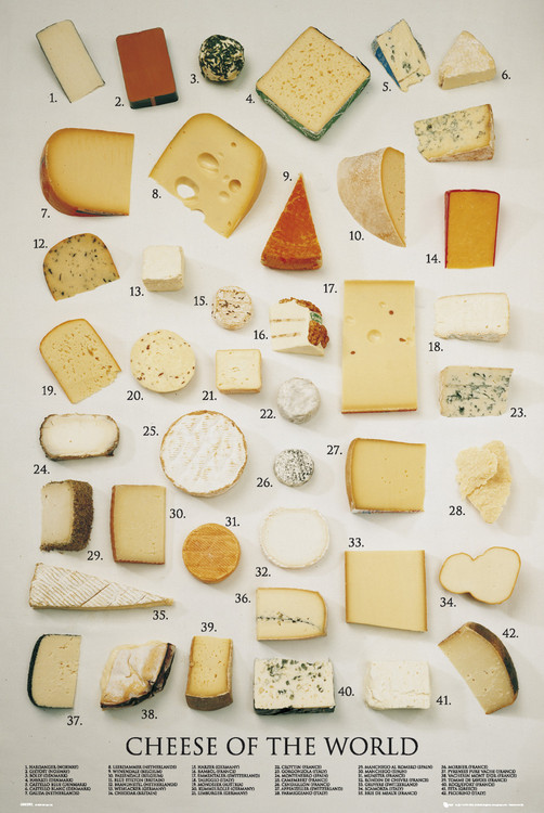 Plagát Cheeses of the world