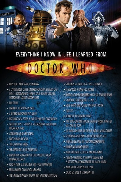 Plagát DOCTOR WHO - Everything I Know In Life