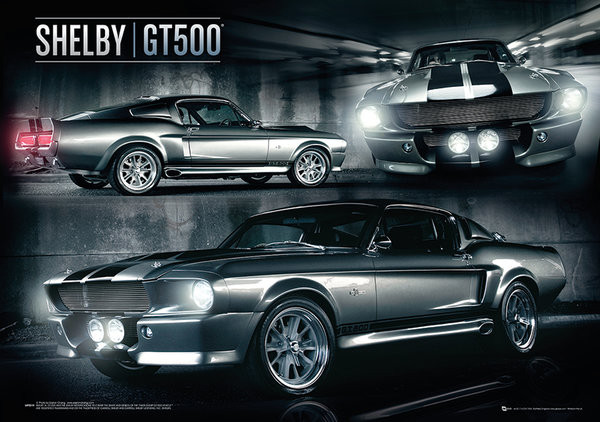 Plagát Ford Shelby - Mustang GT500