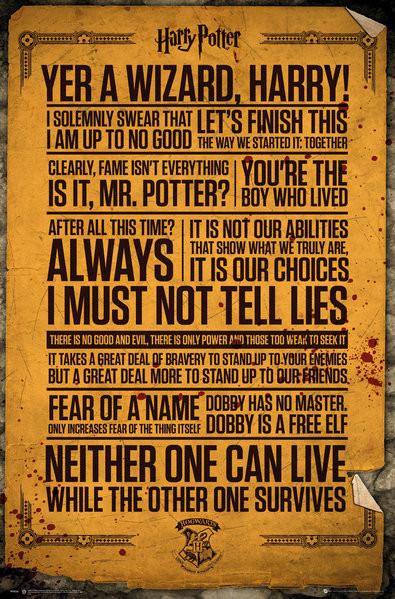 Plagát Harry Potter - Quotes