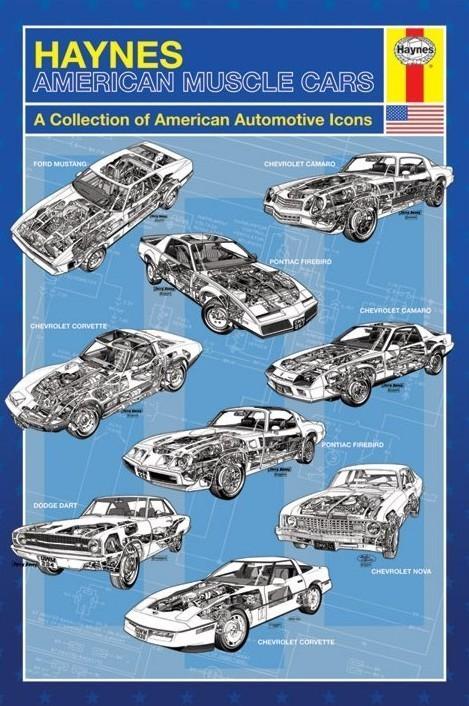 Plagát Haynes - american muscle cars