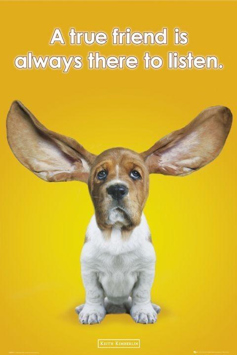 Plagát Keith Kimberlin - ears