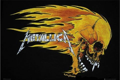 Plagát Metallica - flaming skull