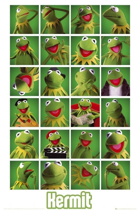 Plagát MUPPETS - kermit collage