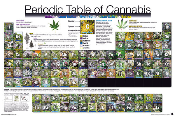 Plagát Periodic Table - Of Cannabis