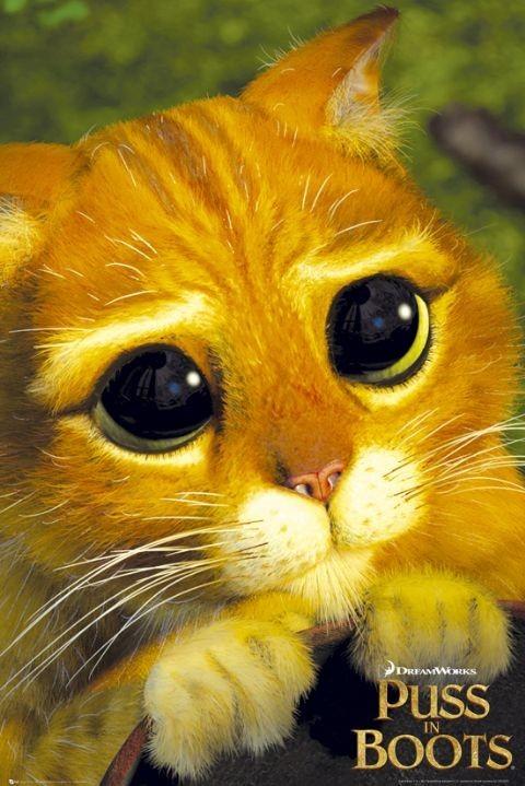 Plagát PUSS IN BOOTS - cats eye