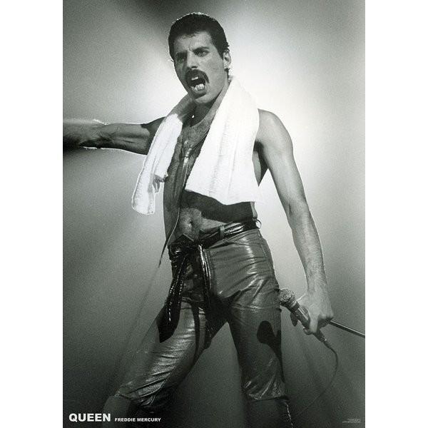 Plagát  Queen (Freddie Mercury) - Live On Stage