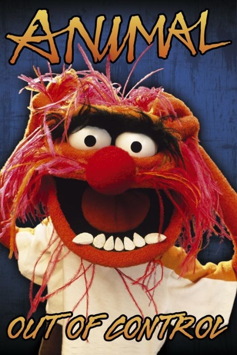 Plagát THE MUPPETS - animal