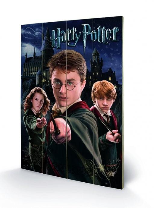 Harry Potter – Harry, Ron, Hermione plakát fatáblán