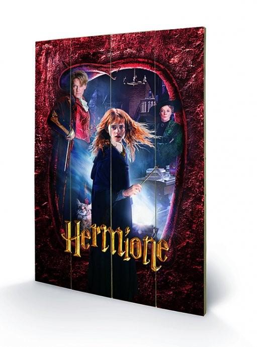 Harry Potter - Hermione plakát fatáblán