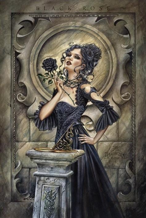 Alchemy - black rose Plakat