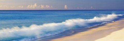 Breaking wave Plakat