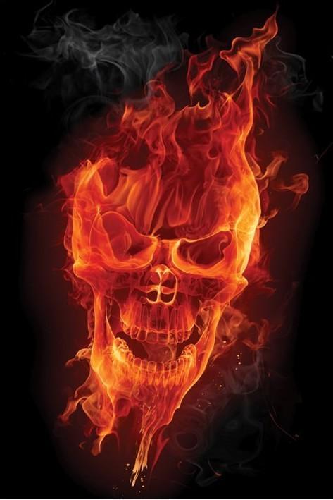 Flamig skull Plakat