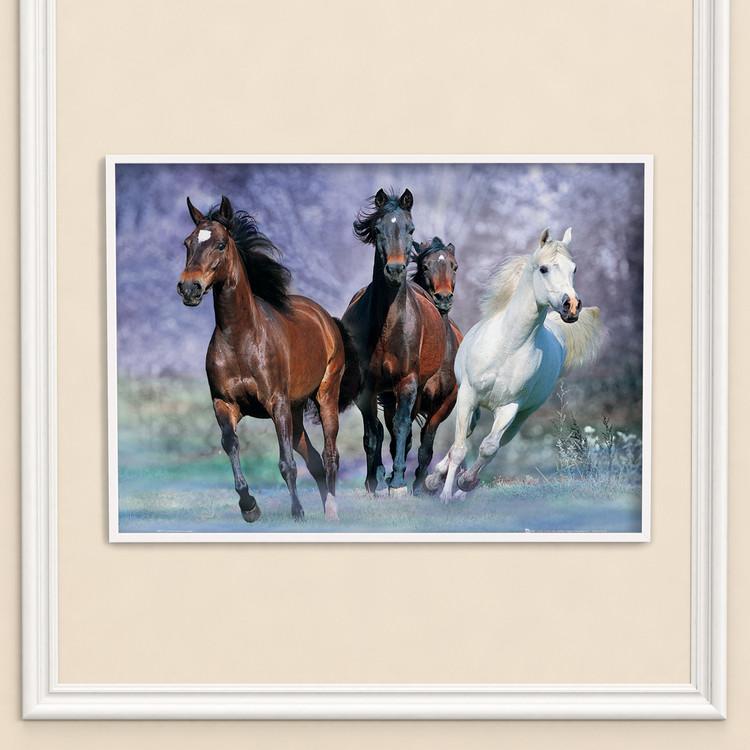 Hästar - Running, Bob Langrish Plakat