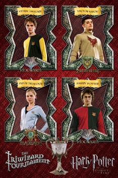 HARRY POTTER 4 - triwizard tournament Plakat