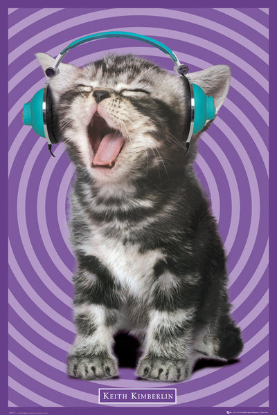 Keith Kimberlin – kitten headphones Plakat