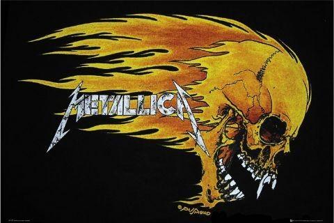 Metallica - flaming skull Plakat