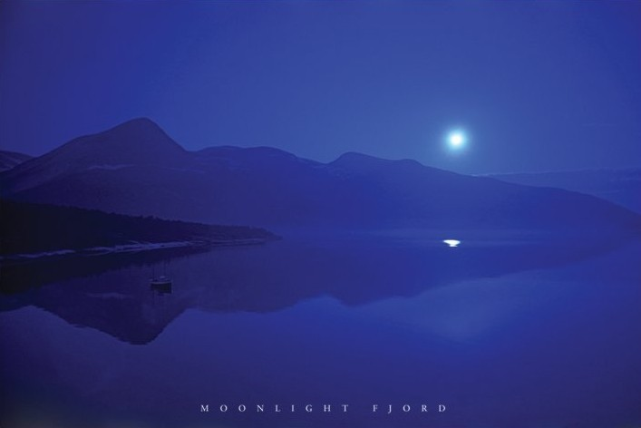 Moonlight fjord Plakat