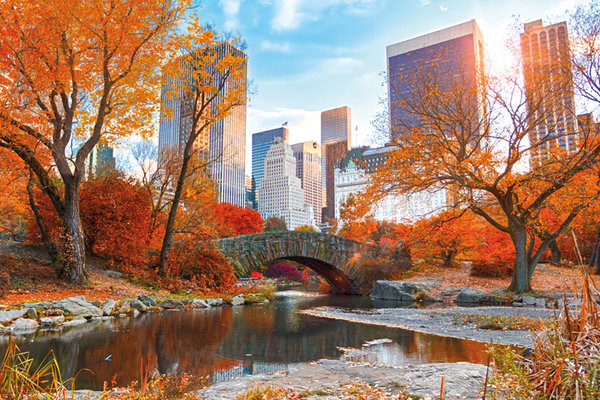 New York - Central Park Autumn Plakat