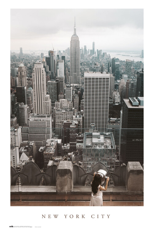 Plakat New York City Views