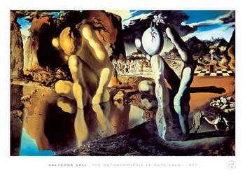 Salvador Dali - metamorphosis Plakat
