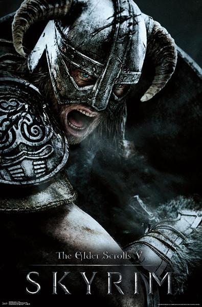 Skyrim The Elder Scrolls V - Aerial Plakat