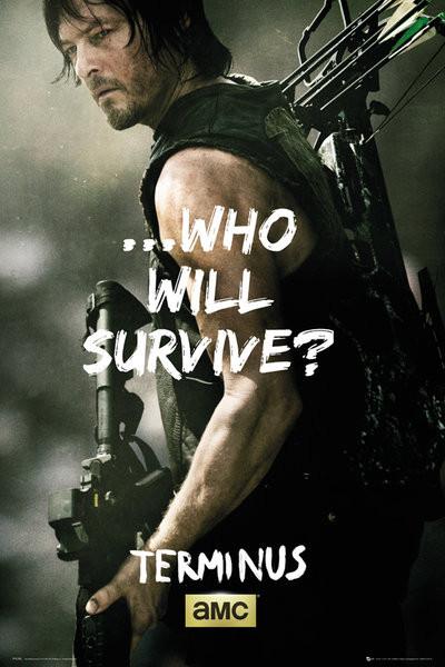 The Walking Dead - Daryl Survive Plakat