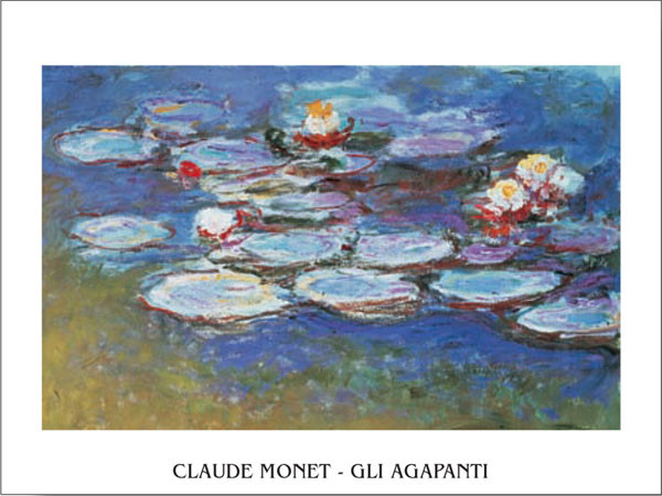 Water Lilies (Agapanthus) Kunsttryk