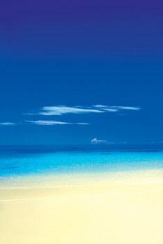 Barbuda Beach Plakat