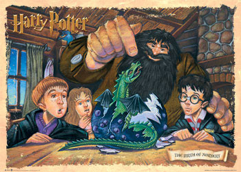 HARRY POTTER - birth of norb. Plakat