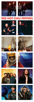 Red hot chili peppers - snapshots Plakat