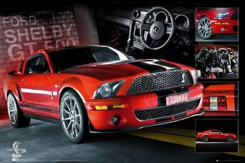 Poster Red Mustang