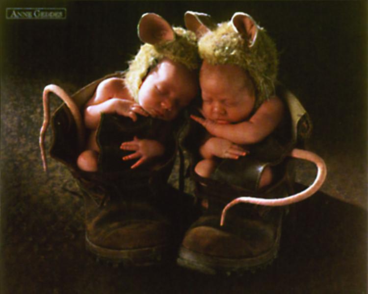Anne Geddes - mice Plakát