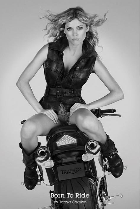 Bron to ride - Tanya Chalkin Plakát