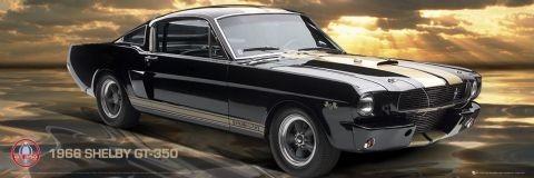 Ford Shelby - gt 350  plakát