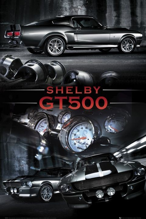 Ford Shelby - Mustang gt 500 plakát