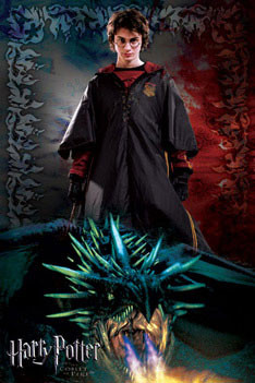 HARRY POTTER 4 - dragon Plakát
