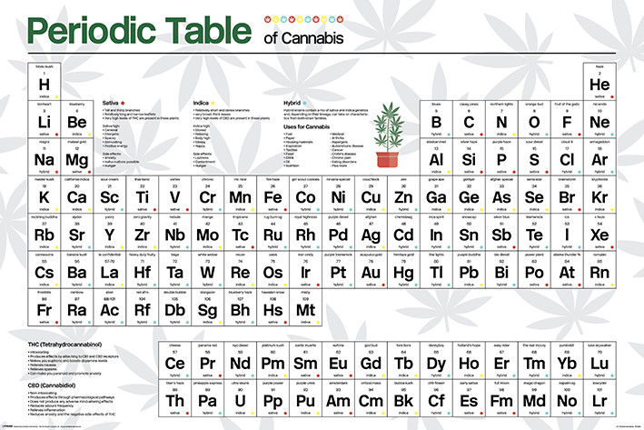 Periodic Table - Cannabis Plakát