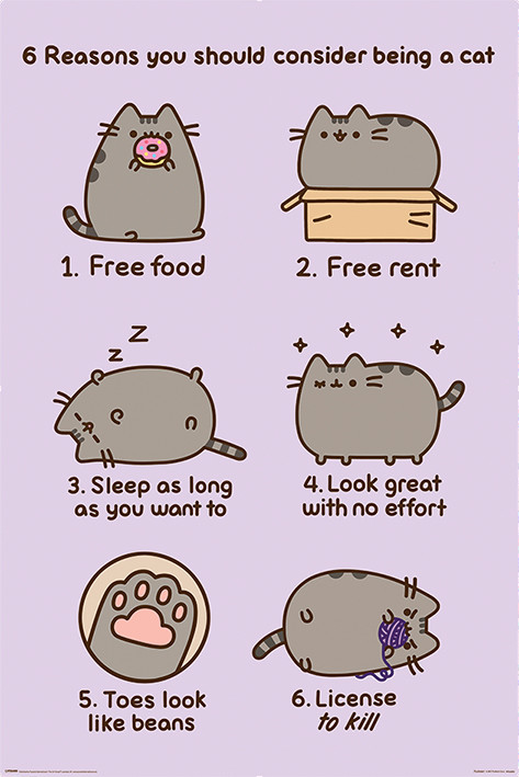 Pusheen - Reasons to be a Cat Plakát
