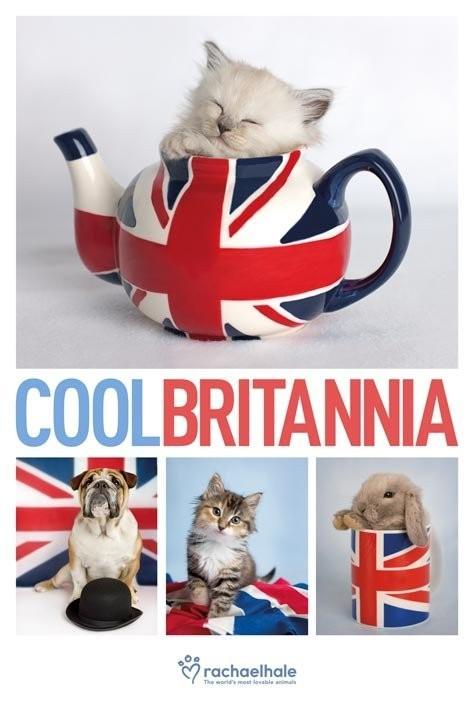 Rachael Hale - cool britannia Plakát
