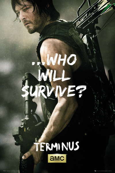 The Walking Dead - Daryl Survive Plakát
