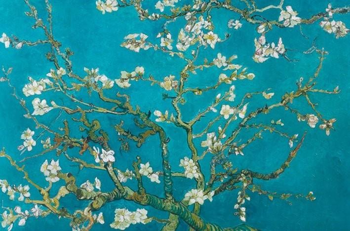 Vincent van Gogh - almond blossom san ramy 1890 Plakát