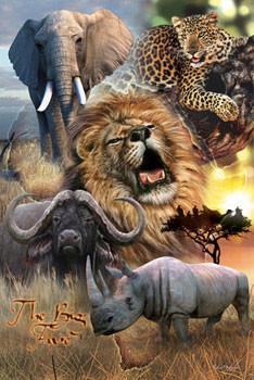 Plakát African big five - silná pětka