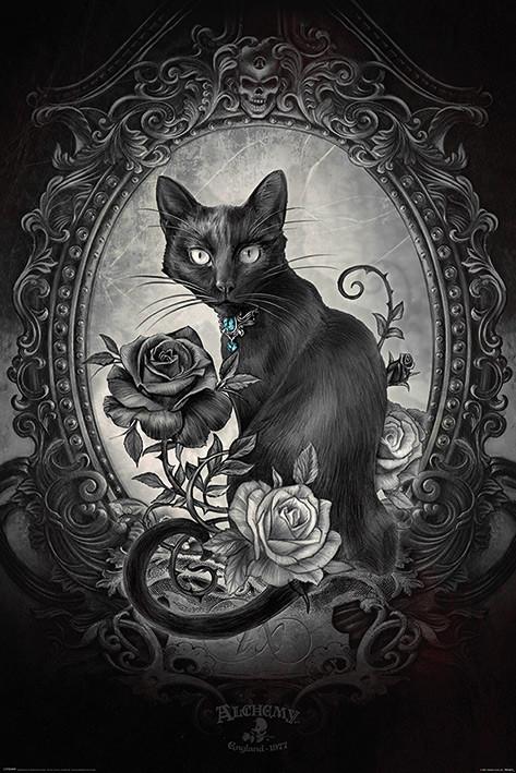 Plakát Alchemy - Paracelcus
