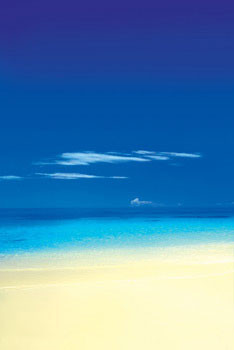 Plakát Barbuda Beach